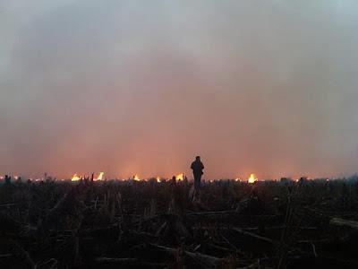 Chapter 442-Jerebu-kebakaran-riau-punca