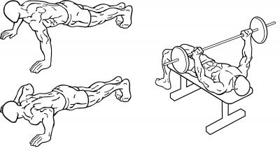 Push-up & bench press