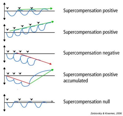 Supercompensation Dalam Latihan