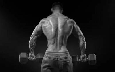 Aiman Radzi - Apa Jadi Apabila Anda Berhenti Gym