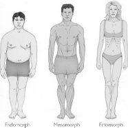 Diet Mengikut Bentuk Badan