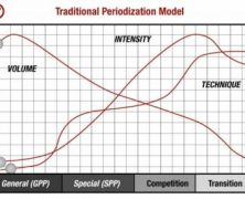 Asas Periodization