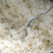 Makan Nasi Gemuk